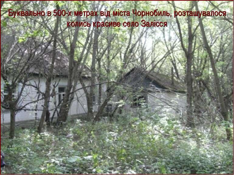 Буквально в 500-х метрах від міста Чорнобиль, розташувалося колись красиве се...