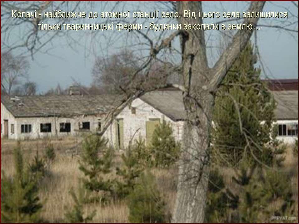 Копачі - найближче до атомної станції село. Від цього села залишилися тільки ...