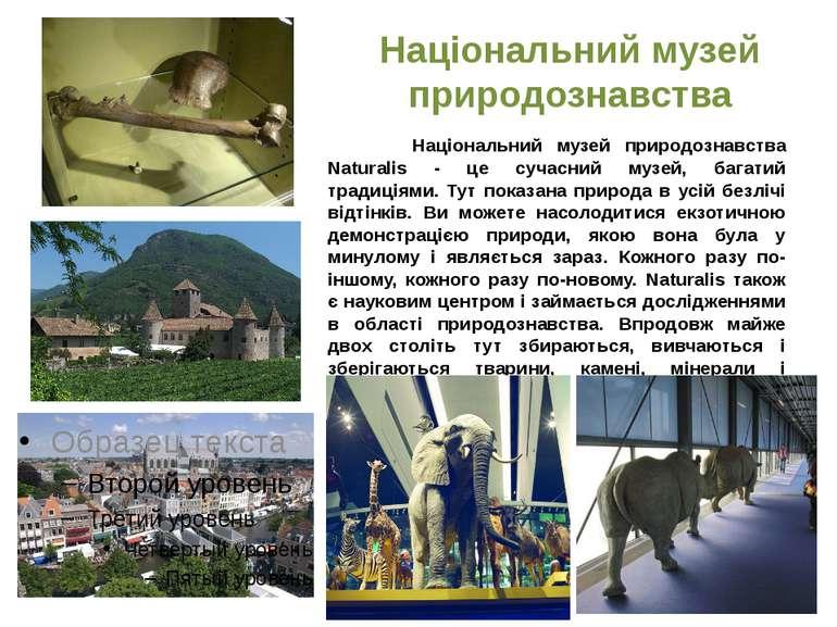 Національний музей природознавства Національний музей природознавства Natural...