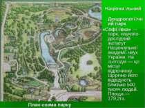 Націона льний Дендрологі чний парк «Софі ївка»— парк, науково-дослідний інст...