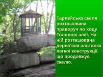 Тарпейська скеля розташована праворуч по ходу Головної алеї. На ній розташова...