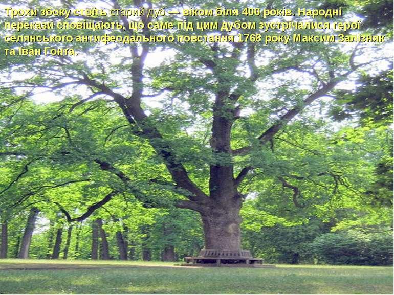 Трохи збоку стоїть старий дуб — віком біля 400 років. Народні перекази сповіщ...