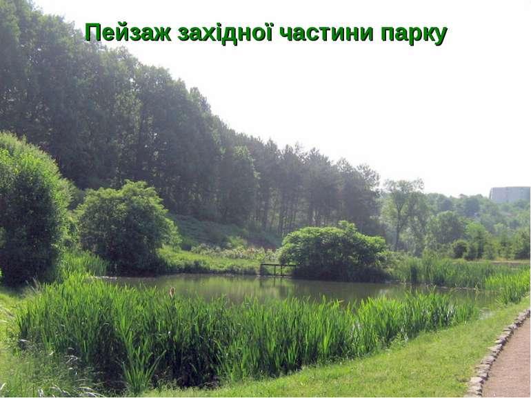 Пейзаж західної частини парку