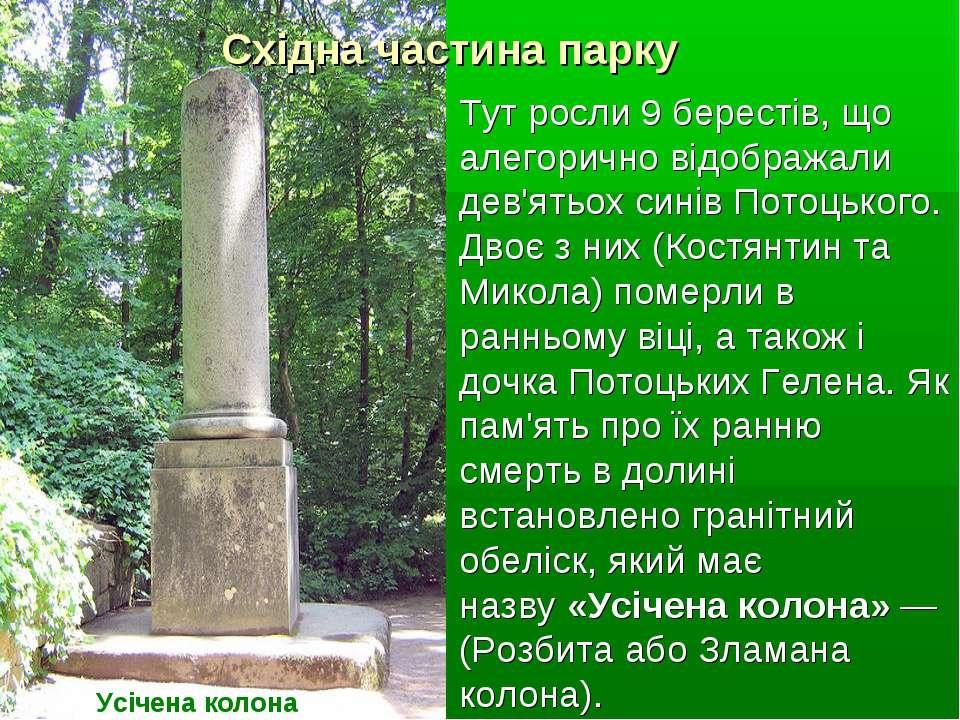 Східна частина парку Усічена колона Тут росли 9 берестів, що алегорично відоб...