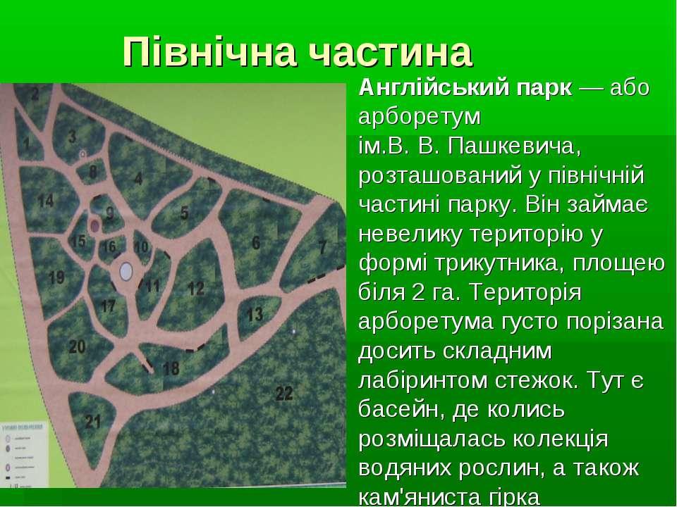 Північна частина Англійський парк — або арборетум ім.В.В.Пашкевича, розташо...