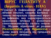 ВІРУС ГЕПАТИТУ А (hepatitis A virus - HAV) Гепатит А (інфекційний або епіде-м...