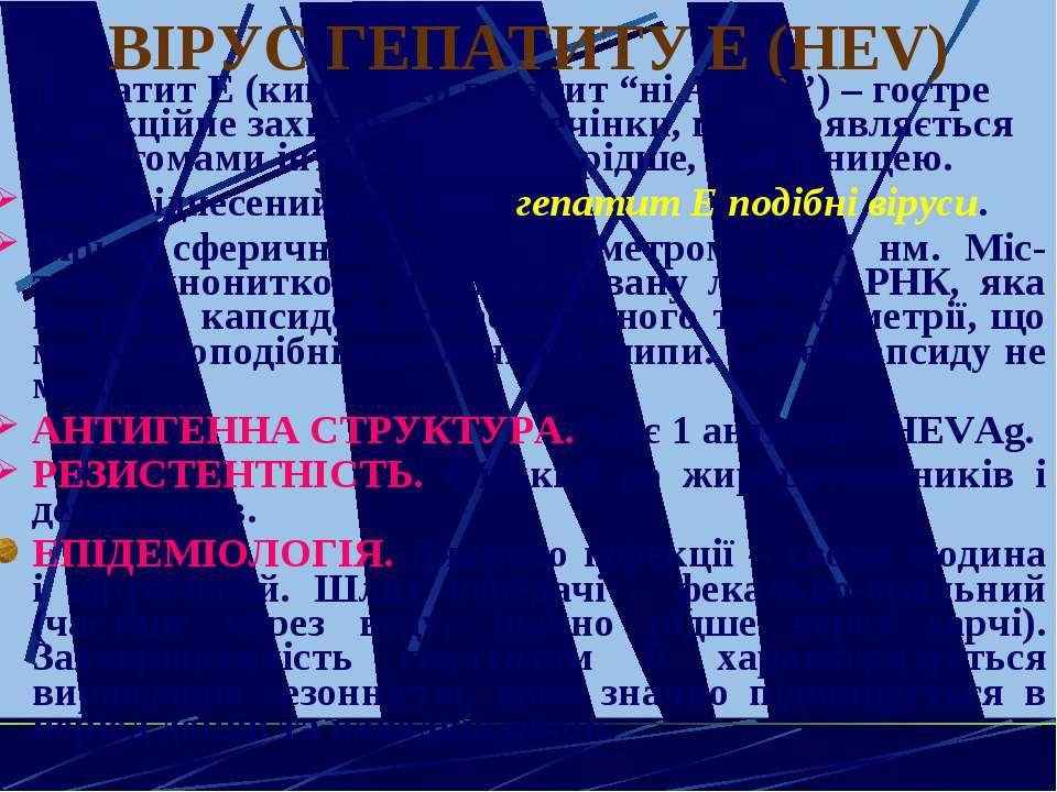 """ВІРУС ГЕПАТИТУ Е (HЕV) Гепатит Е (кишковий гепатит """"ні А ні В"""") – гостре інфе..."""