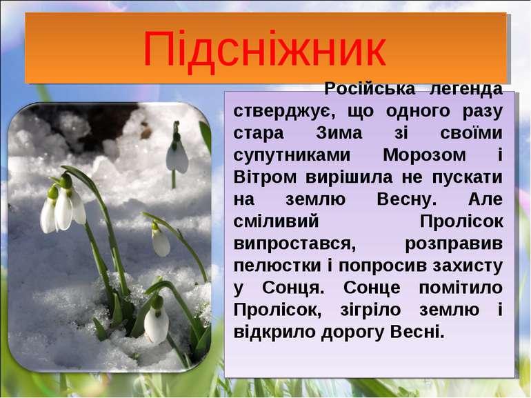Підсніжник Російська легенда стверджує, що одного разу стара Зима зі своїми с...