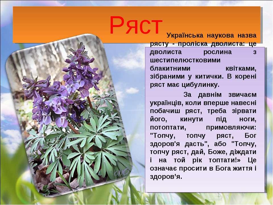 Ряст Українська наукова назва рясту - проліска дволиста: це дволиста рослина ...