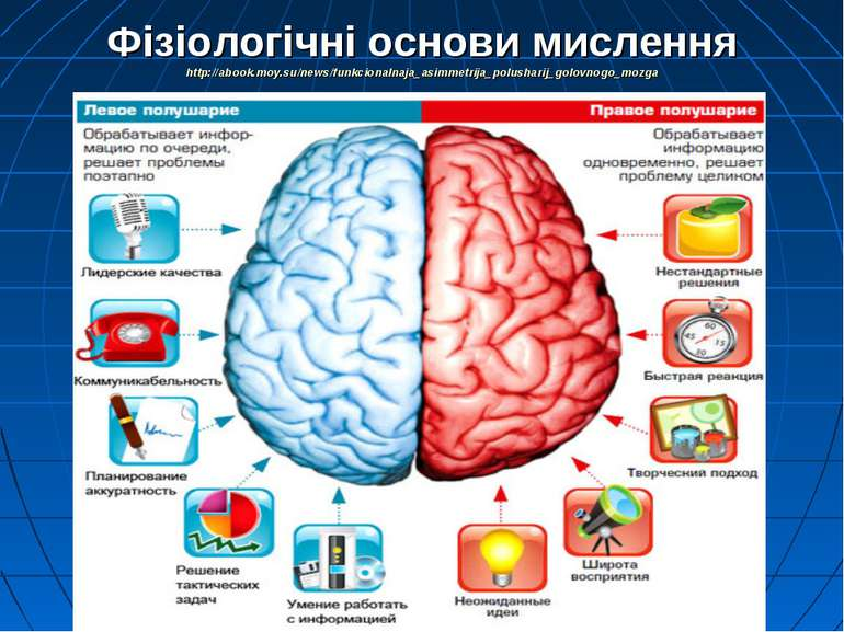 Фізіологічні основи мислення http://abook.moy.su/news/funkcionalnaja_asimmetr...