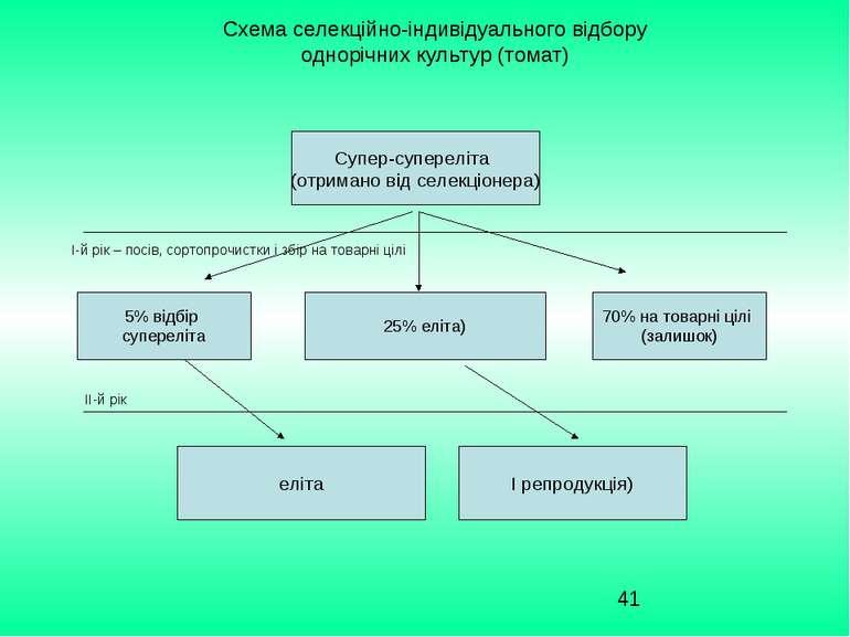 Схема селекційно-індивідуального відбору однорічних культур (томат) Супер-суп...