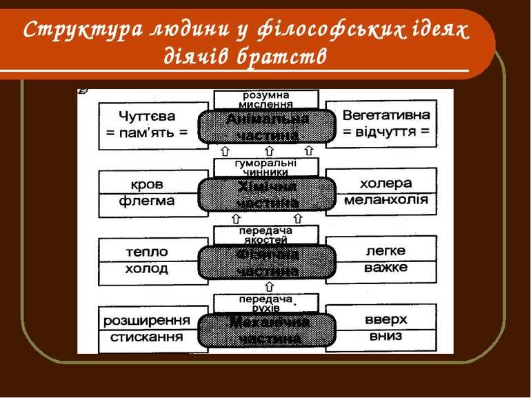 Структура людини у філософських ідеях діячів братств