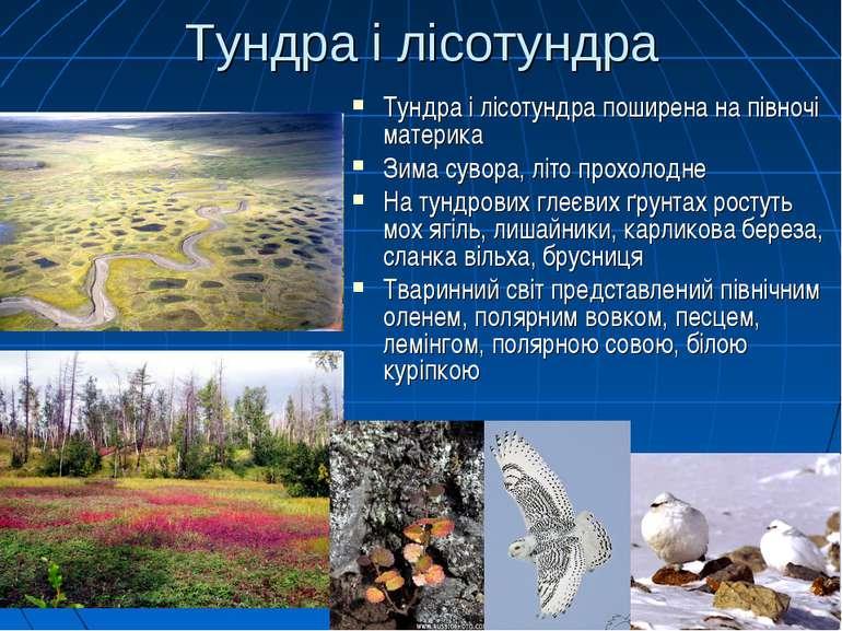Тундра і лісотундра Тундра і лісотундра поширена на півночі материка Зима сув...