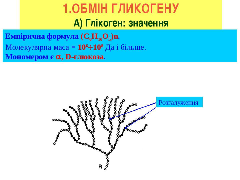 1.ОБМІН ГЛИКОГЕНУ А) Глікоген: значення Емпірична формула (С6H10O5)n. Молекул...