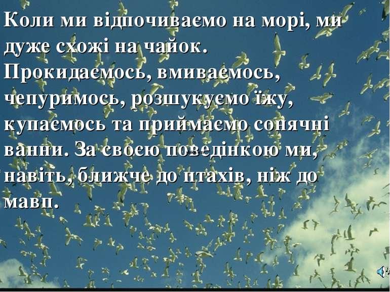 Коли ми відпочиваємо на морі, ми дуже схожі на чайок. Прокидаємось, вмиваємос...