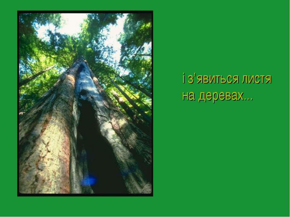 і з'явиться листя на деревах...