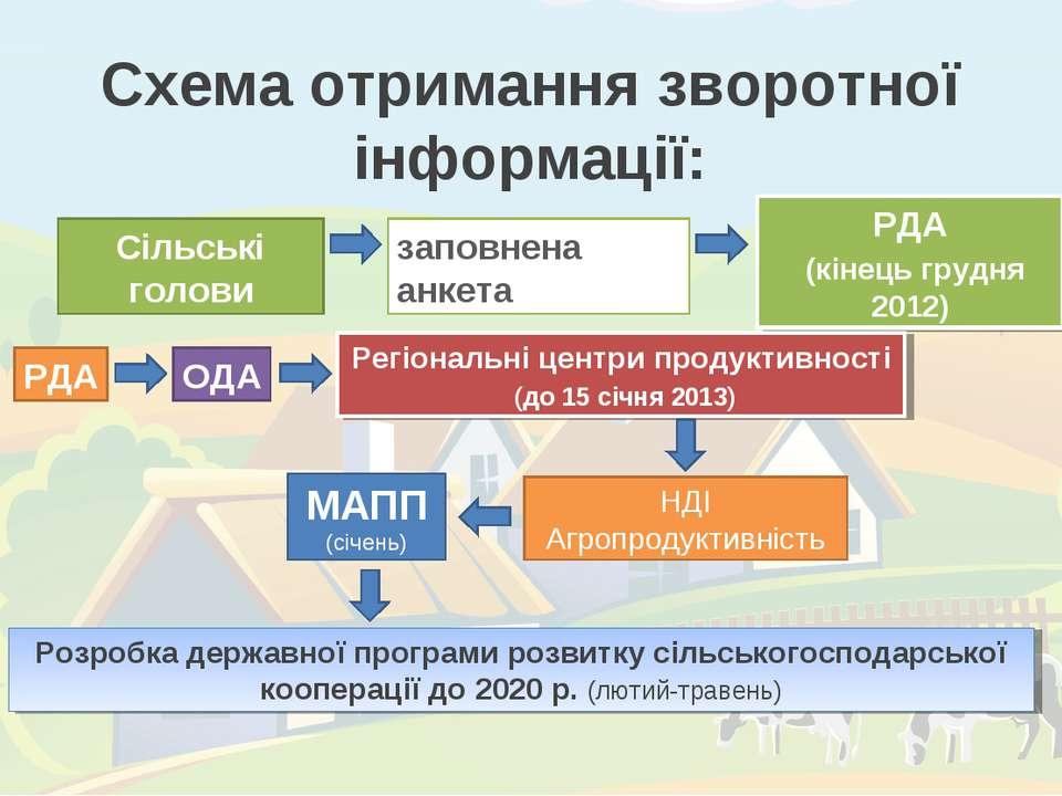 Схема отримання зворотної інформації: Сільські голови заповнена анкета РДА (к...