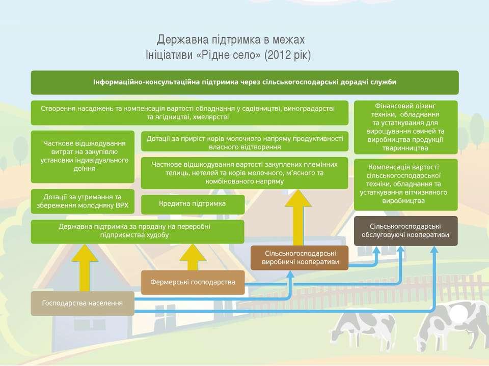 Державна підтримка в межах Ініціативи «Рідне село» (2012 рік)