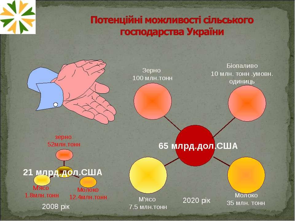 2008 рік 2020 рік Біопаливо 10 млн. тонн .умовн. одиниць