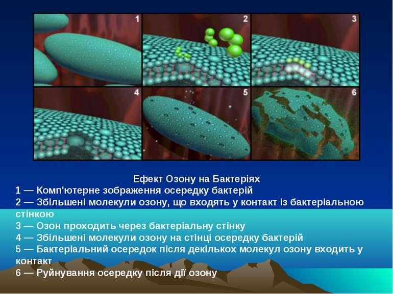 Ефект Озону на Бактеріях 1 ― Комп'ютерне зображення осередку бактерій 2 ― Збі...