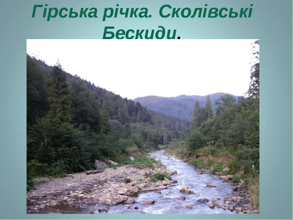 Гірська річка. Сколівські Бескиди.