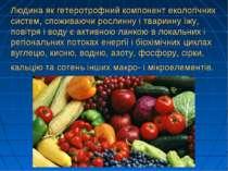 Людина як гетеротрофний компонент екологічних систем, споживаючи рослинну і т...
