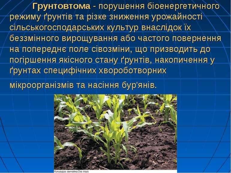 Грунтовтома - порушення біоенергетичного режиму ґрунтів та різке зниження уро...