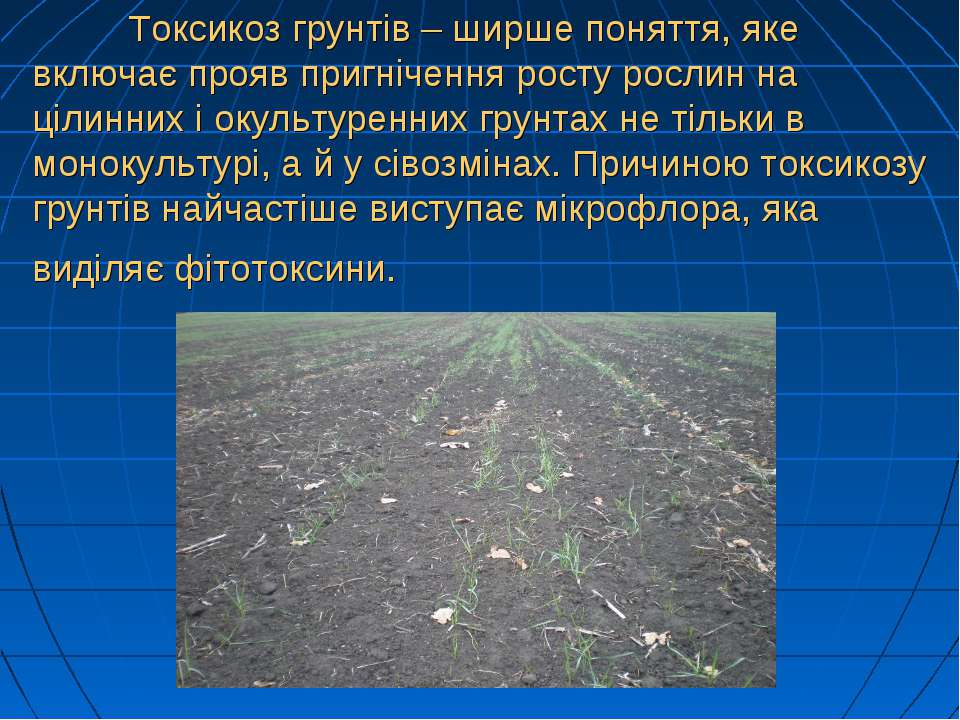 Токсикоз грунтів – ширше поняття, яке включає прояв пригнічення росту рослин ...