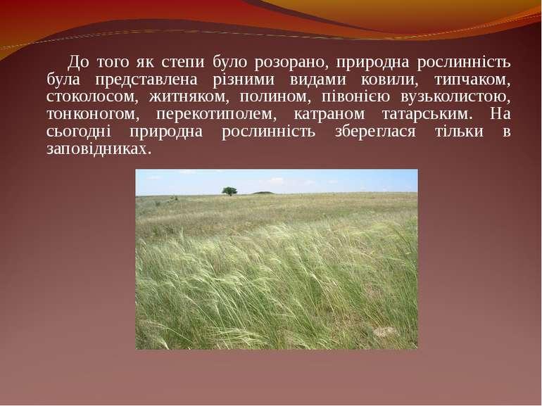 До того як степи було розорано, природна рослинність була представлена різним...