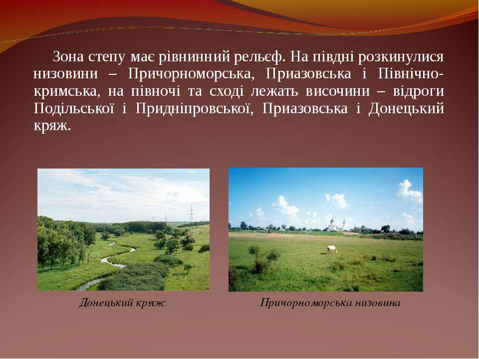 Зона степу має рівнинний рельєф. На півдні розкинулися низовини – Причорномор...