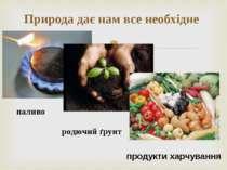 Природа дає нам все необхідне паливо родючий ґрунт продукти харчування