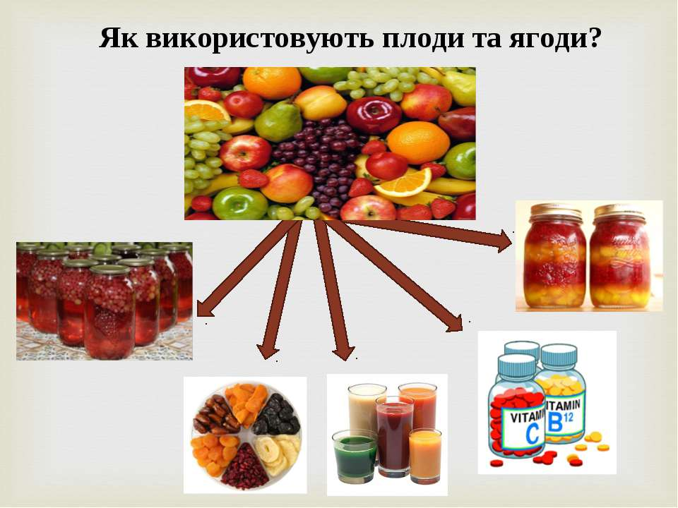 Як використовують плоди та ягоди?