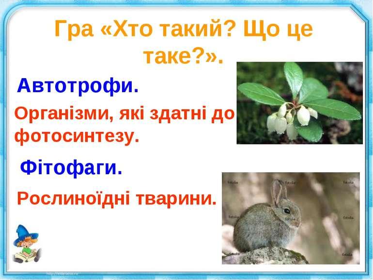 Гра «Хто такий? Що це таке?». Автотрофи. Організми, які здатні до фотосинтезу...