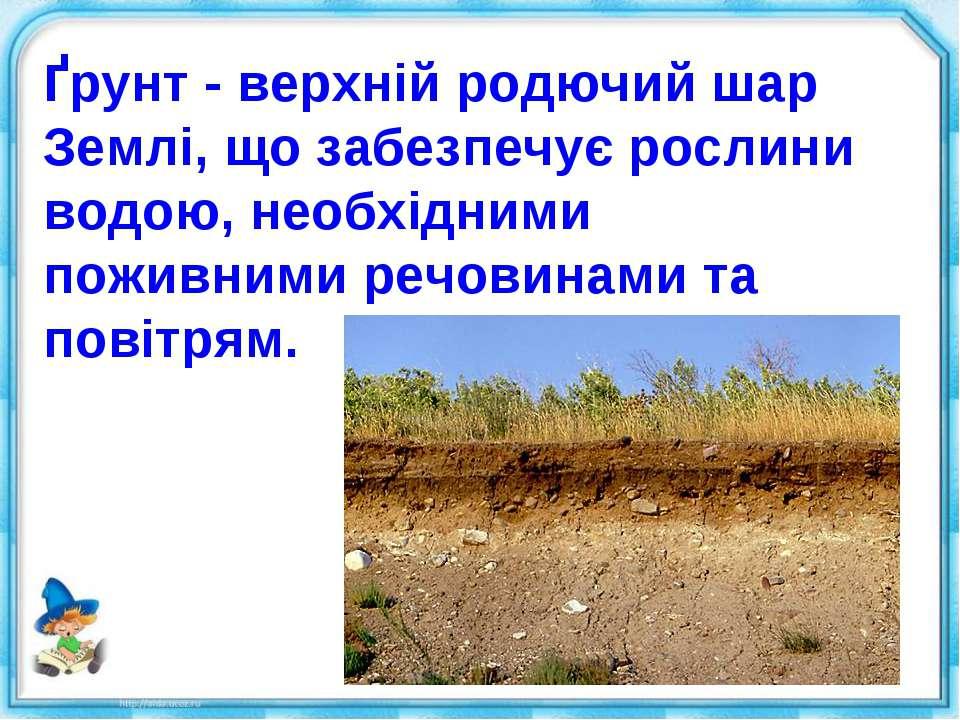 Ґрунт - верхній родючий шар Землі, що забезпечує рослини водою, необхідними п...