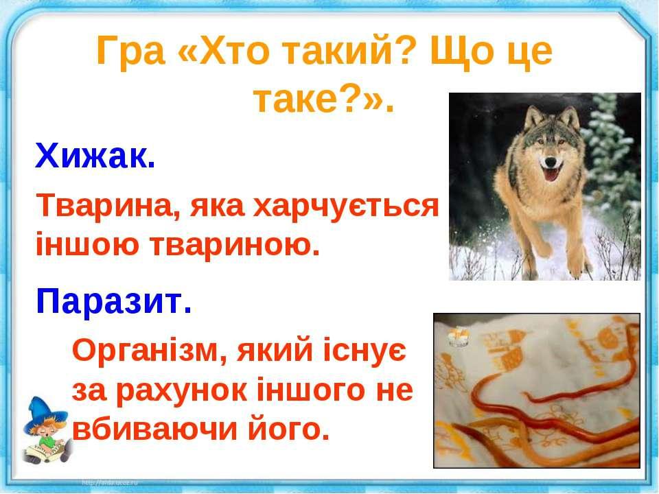 Гра «Хто такий? Що це таке?». Хижак. Тварина, яка харчується іншою твариною. ...