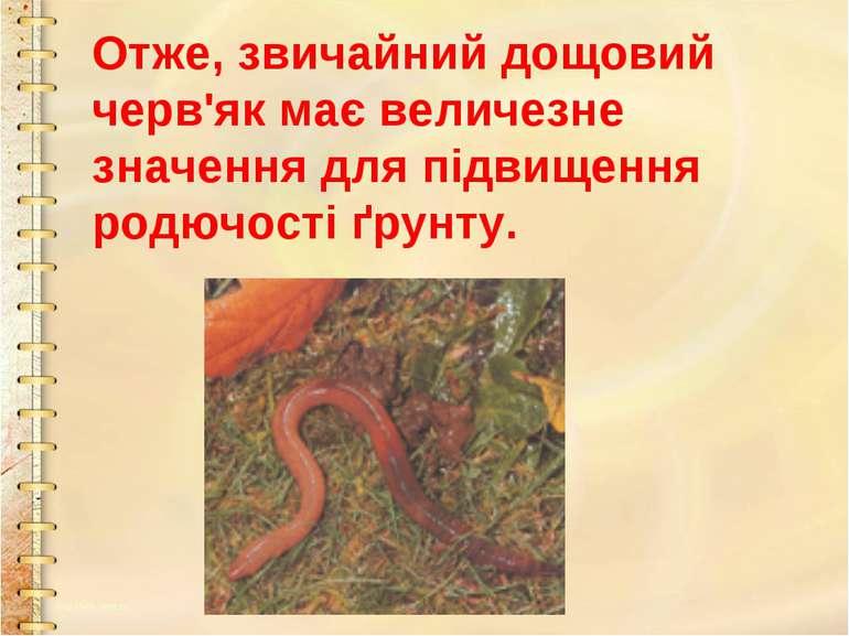 Отже, звичайний дощовий черв'як має величезне значення для підвищення родючос...