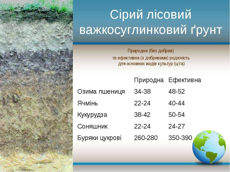 Сірий лісовий важкосуглинковий ґрунт Природна (без добрив) та ефективна (з до...