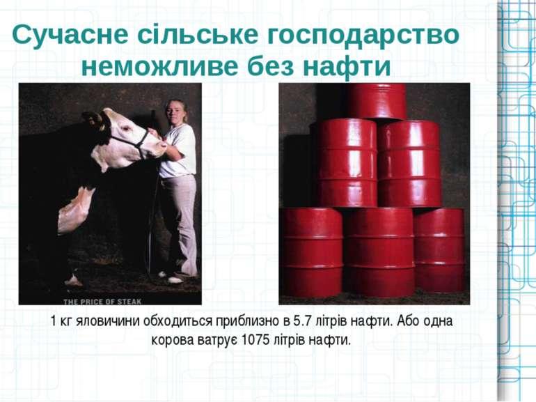 Сучасне сільське господарство неможливе без нафти 1 кг яловичини обходиться п...