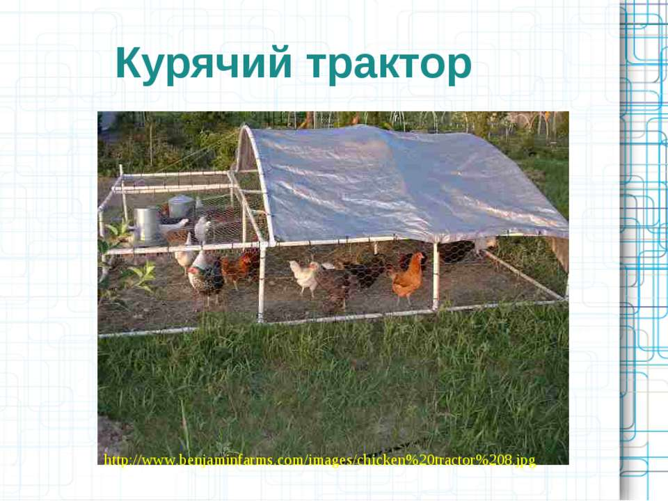 Курячий трактор http://www.benjaminfarms.com/images/chicken%20tractor%208.jpg