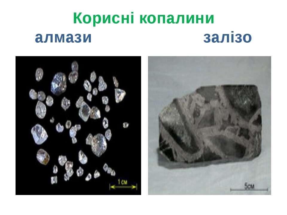 Корисні копалини алмази залізо