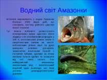 Водний світ Амазонки Іхтіологи нараховують у водах Амазонки близько 2000 виді...