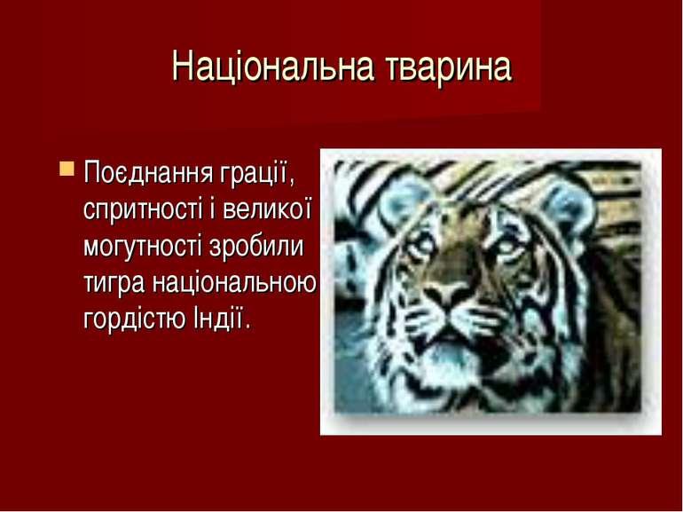 Національна тварина Поєднання грації, спритності і великої могутності зробили...