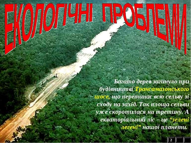 Підсічно-вогняна система землеробства продовжує знищувати амазонську сельву п...
