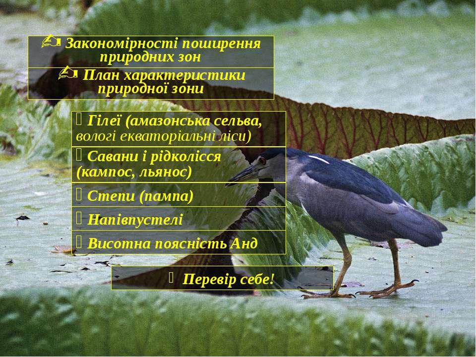 Закономірності поширення природних зон План характеристики природної зони Гіл...