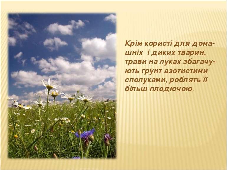 Крім користі для дома- шніх і диких тварин, трави на луках збагачу-ють грунт ...