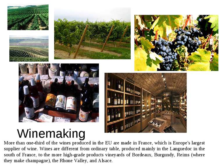 Winemaking More than one-third of the wines produced in the EU are made in Fr...