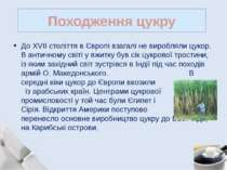 До XVII століття в Європі взагалі не виробляли цукор. В античному світі у вжи...