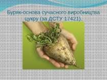 Буряк-основа сучасного виробництва цукру (за ДСТУ 17421).
