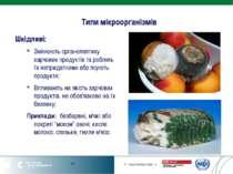 Типи мікроорганізмів Шкідливі: Змінюють органолептику харчових продуктів та р...