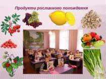 Продукти рослинного похождення